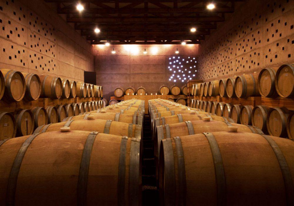 El arte del vino español